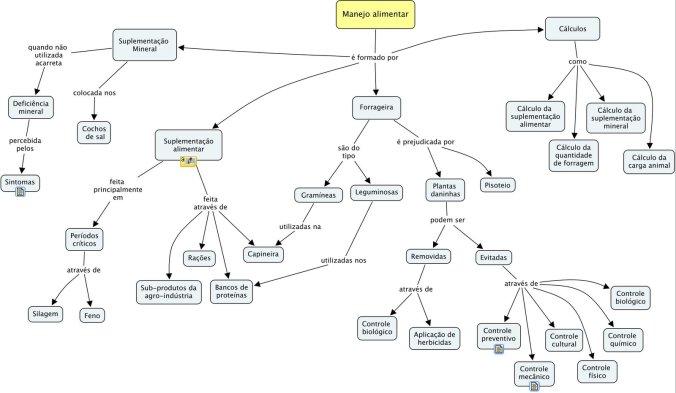Mapa conceitual do manejo alimentar